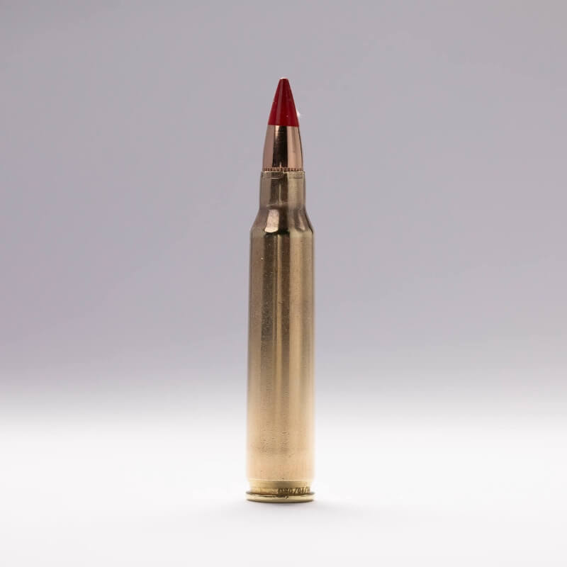 5.56x45 mm Tracer (M856)